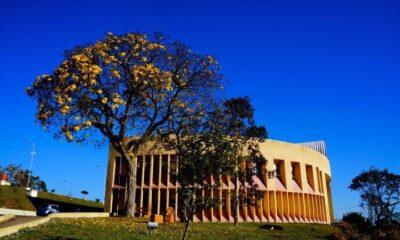 PUC Minas Poços de Caldas lançou a graduação em Biomedicina