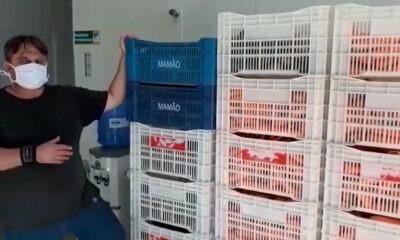 Solidariedade na pandemia: produtor doa meia tonelada de legumes ao Banco de Alimentos