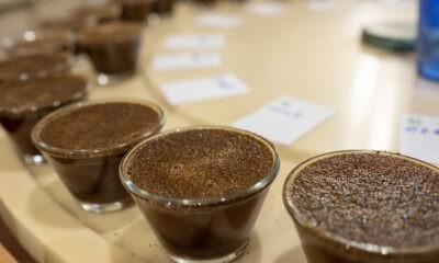 Cafeicultores têm até 30 de agosto para se inscrever no Concurso de Qualidade dos Cafés de Poços de Caldas