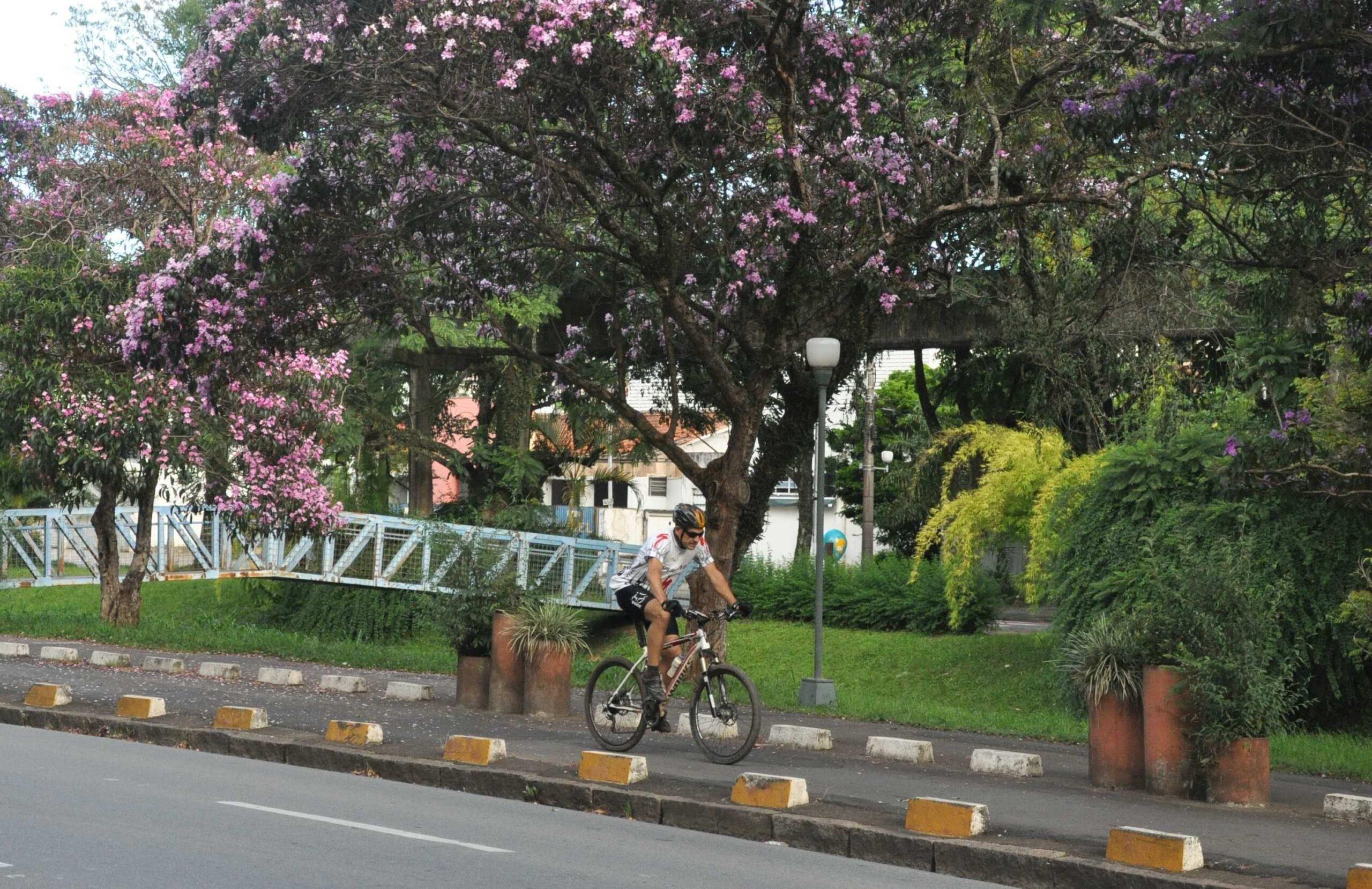 Dia Municipal do Ciclista: Autarquia Municipal de Ensino participa da Semana Nacional do Trânsito